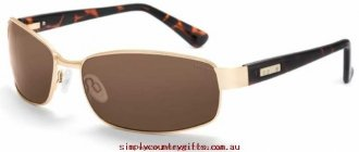 Emergency Cheap Sunglasses Delancey 11302 Bolle Men Glass.91815559 - Shiny Gold/Polarised A-14 Amber